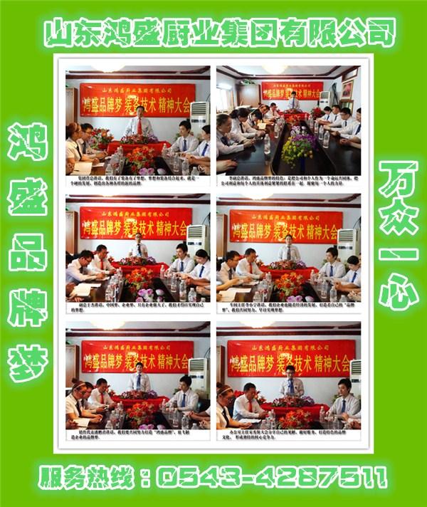 【注重细节 以质取胜】助创《hongsheng